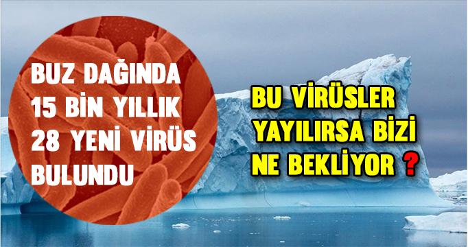 Buz dağında 15 bin yıllık 28 yeni virüs bulundu