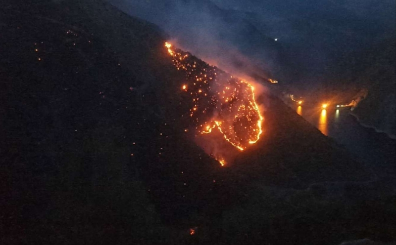 Diyarbakır'da orman yangını